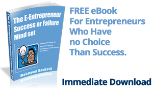 Small and Medium Business Sales and Technology Consultant - Book Download